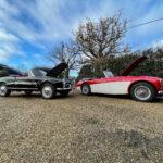 Alfa Romeo Giulia Spider Austin Healey classic car insurance valuation